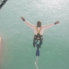 Bungee Jumping dall'Harbour Bridge