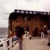 Paseo del Muelle, Aquarium