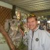 Blacktown, Featherdale Wildlife Park,  koala