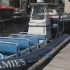 Zodiac Jamies per Whale Watching