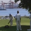 Stanley Park, Cricket
