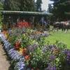 Stanley Park, Rose Garden