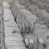 Esercito di Terracotta, panoramica