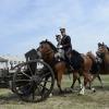 Il Reggimento Artiglieria a cavallo Voloire